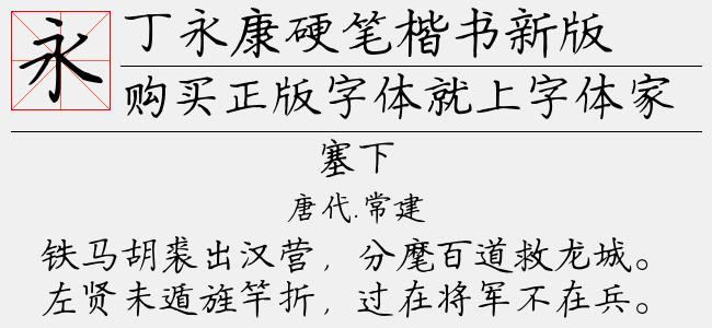 丁永康硬笔楷书新版-其他字体