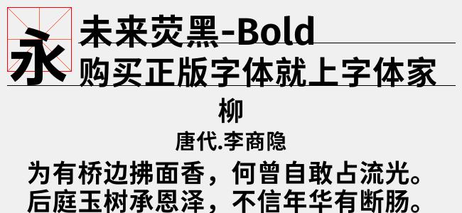 未来荧黑-Bold-佚名